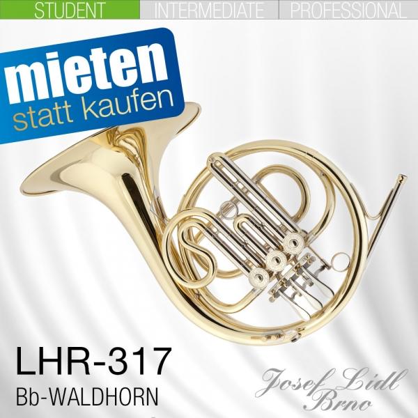 LIDL_Miete_LHR317_Einfachhorn.jpg