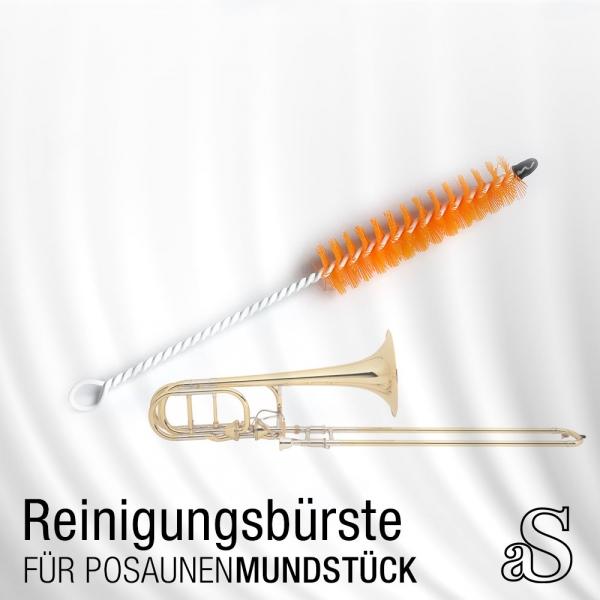 aS_Wischrbuerste_PosMundst.jpg