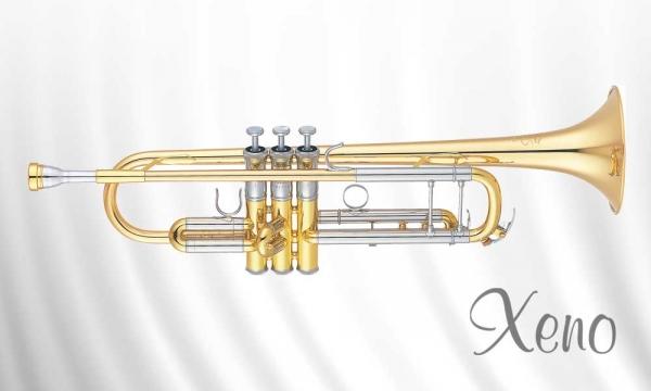 Yamaha_Trompete_YTR8335G_Xeno.jpg
